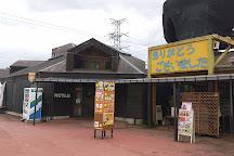 Nasu World Monkey Park, Nasu-machi, Japan