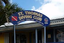 St. Thomas Diving Club, Bolongo Bay, U.S. Virgin Islands