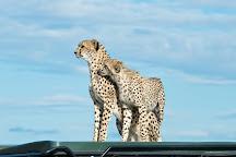 Adventure Africa Safaris, Nairobi, Kenya