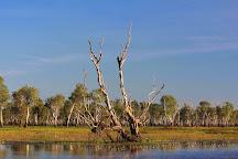 Yellow Water Cruises, Kakadu National Park, Australia