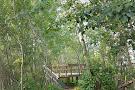 Clifford E. Lee Nature Sanctuary