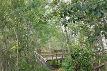 Clifford E. Lee Nature Sanctuary, Spruce Grove, Canada