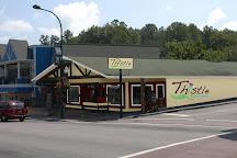 Thistle Dew!, Gatlinburg, United States