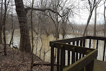 Goll Woods State Nature Preserve, Archbold, United States