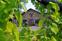 Spring Lake Winery, Lockport, United States