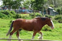 Lurgybrack Open Farm, County Donegal, Ireland