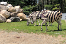Adirondack Animal Land, Gloversville, United States