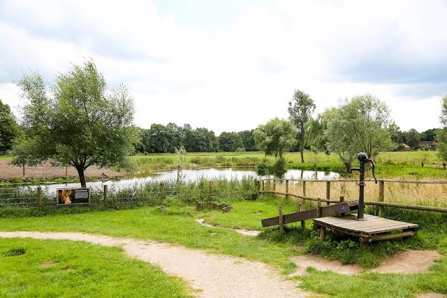 Spielplatz & Tiergarten Gut Wulksfelde