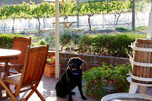 Every Man and His Dog Vineyard, Richmond, Australia