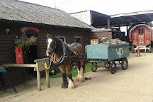 Dorset Heavy Horse Farm Park, Verwood, United Kingdom