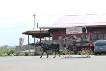 A is for Amish Buggy Rides, Ronks, United States