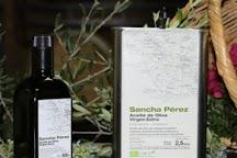 Bodega Sancha Perez, Conil de la Frontera, Spain