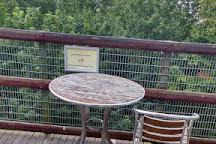 Welsh Mountain Zoo, Colwyn Bay, United Kingdom