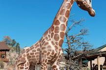 Cheyenne Mountain Zoo, Colorado Springs, United States