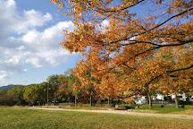 Central Park, Hiroshima, Japan