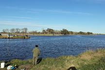 Laguna de Bragado, Bragado, Argentina