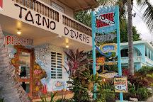 Taino Divers, Rincon, Puerto Rico