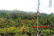 BaliHit, Kuta, Indonesia