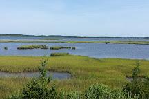Fenwick Island State Park, Fenwick Island, United States