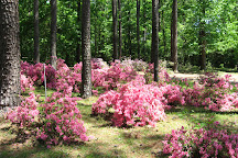 Gardens of the American Rose Center, Shreveport, United States