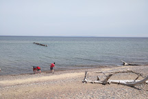 Whitefish Point Bird Observatory, Paradise, United States
