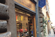 Biblioteq tea shop, Rome, Italy