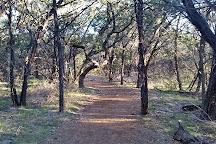 Eisenhower Park, San Antonio, United States