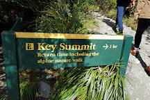 Key Summit Track, Milford, New Zealand