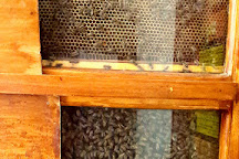 Bee Things, Swellendam, South Africa