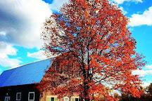 Barnstormer Winery, Rock Stream, United States