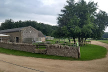 Cotswold Farm Park, Guiting Power, United Kingdom
