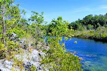 Dagny Johnson Key Largo Hammock Botanical State Park, Key Largo, United States