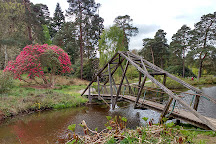 Bedgebury National Pinetum and Forest, Goudhurst, United Kingdom