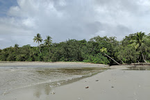 Dubuji Boardwalk, Cape Tribulation, Australia