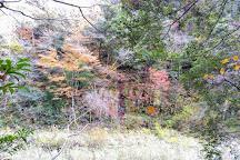 Sandankyo, Akiota-cho, Japan