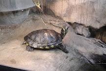 Cherkasy Zoo, Cherkasy, Ukraine