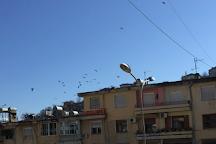 Gjirokaster, Gjirokaster, Albania