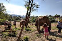Samui Elephant Sanctuary, Bophut, Thailand