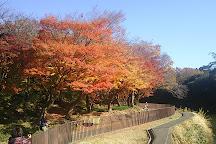 Daibutsu in Shurakuen, Tokai, Japan