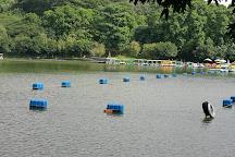 Shenzhen Lianhuashan Park, Shenzhen, China