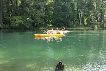 Aquatic Wilderness Adventures, Dunnellon, United States
