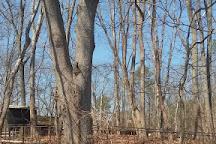 Turkey Swamp Park, Freehold, United States