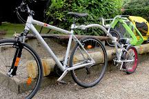 Phoenix Park Bikes, Dublin, Ireland
