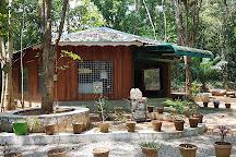 Kodanand Elephant Training Centre, Kodanad, India