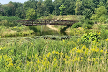 Independence Grove Forest Preserve, Libertyville, United States