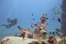 St. Croix Ultimate  Bluewater Adventures (SCUBA), Inc., Christiansted, U.S. Virgin Islands