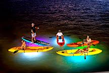 Night Kayak Key West, Key West, United States