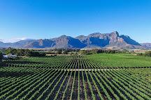 Lynx Wine, Franschhoek, South Africa