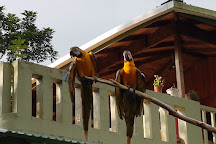 Proyecto Asis, La Fortuna de San Carlos, Costa Rica