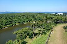 Futtsu Park, Futtsu, Japan